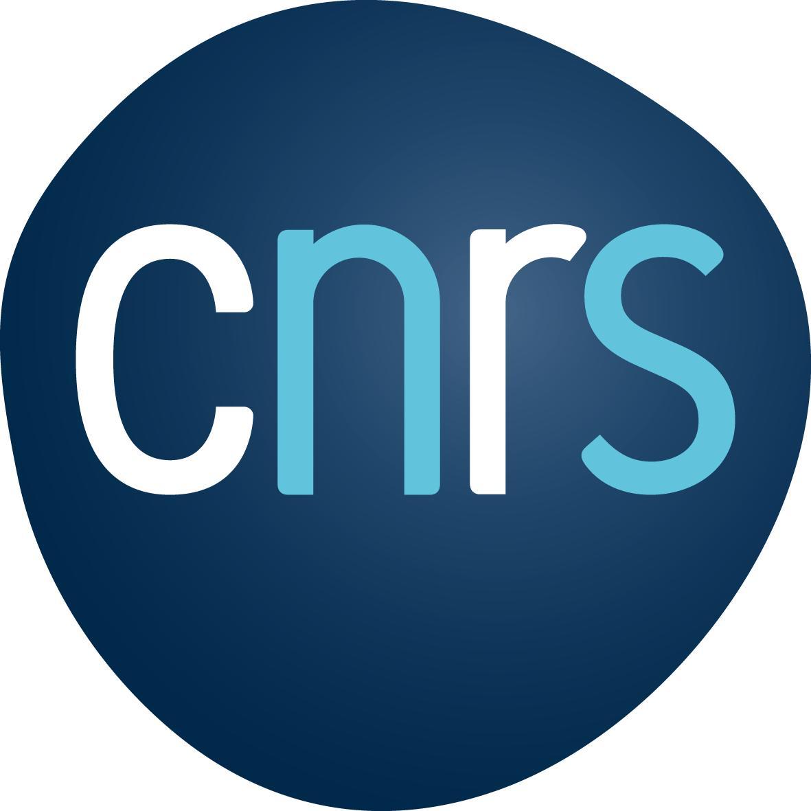 Cnrs Logo Cnrs 2019